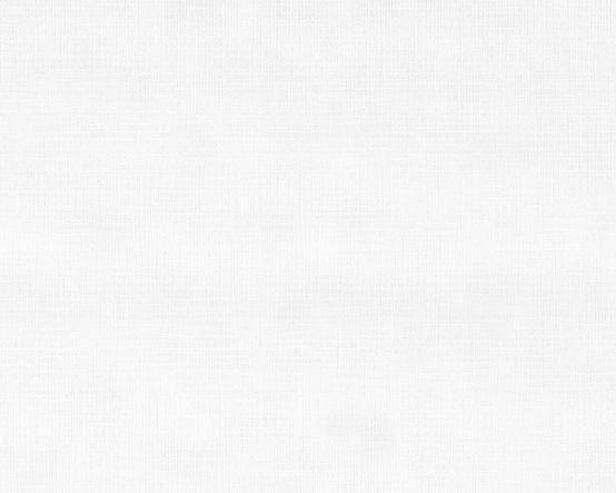 white-linen-paper-texture_R.jpg