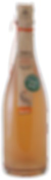 0040775_bio-dem-lunaria-ramoro-pinot-gri