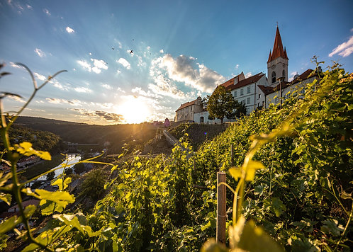 Czech Republic Wine Tasting - 05.02.2021