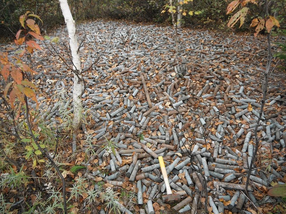 Fontana Shaft Drill Core Dumped DSCF1428