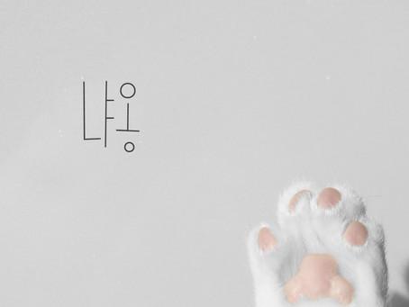 전엄마 '냐옹(feat.JBIE)' - 2015.01.14
