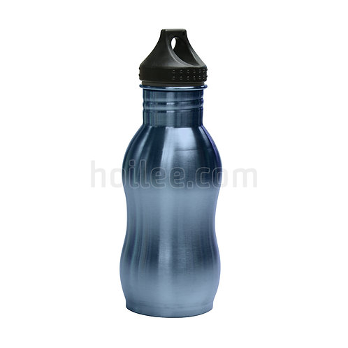 S/S Bottle 550ml