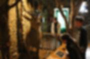 Musée_B1.jpg