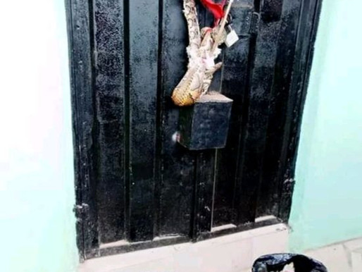 (QUICKLY READ) Woman Dumps Snake Charm At The Shop Of Lady Who Snatched Her Husband