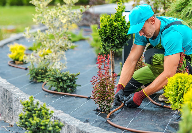 Professional Caucasian Gardener Building
