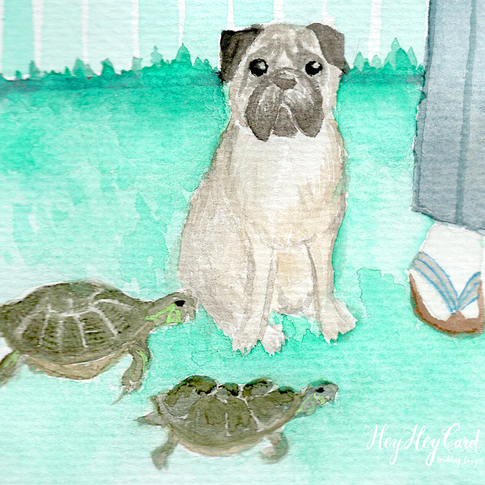 watercolor pug & turtles