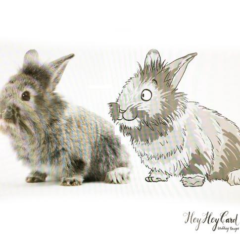 custom bunny digital painting