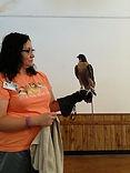 Falcon from Effie y   7-10.jpg