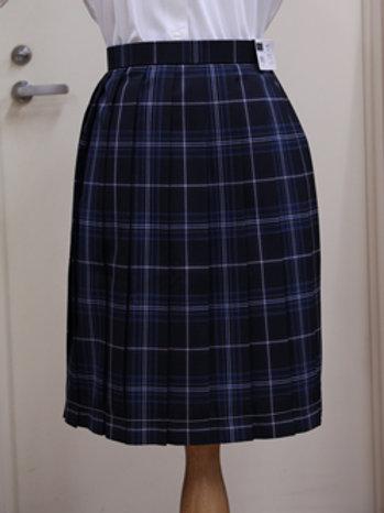 中学・高校共通  女子 夏  チェックスカート