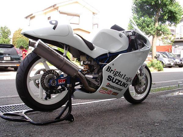 GOOSE350  3.JPG