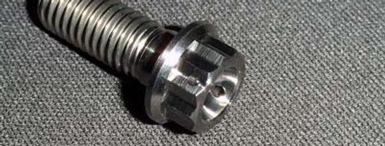 T1014 商品名:削りリアキャリパー取付けボルト(M8-21/P1,25)1本