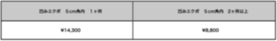 デントリペア価格表.png