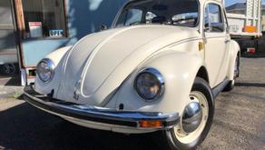 フォルクスワーゲン VW ビートル 1200STD 4速 ディーラー車掲載終了日:2020年03月15日
