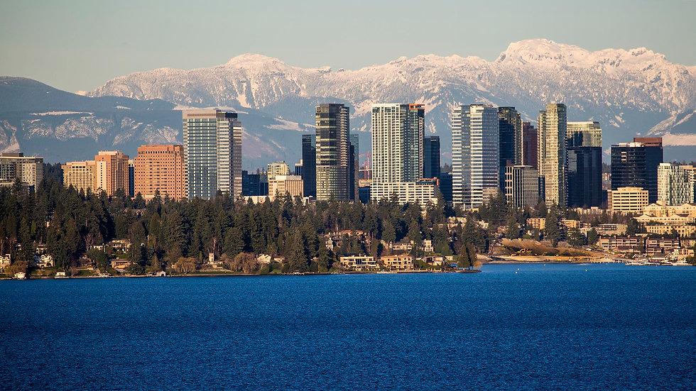 Bellevue skyline.