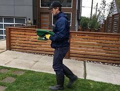 pest control expert removing a pest.