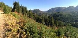 Mountain range with trees.
