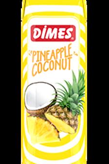 1 liter Aguas Frescas - Tropical Fruit Water