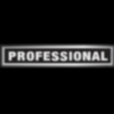 PROFESSIONAL-LOGO.png