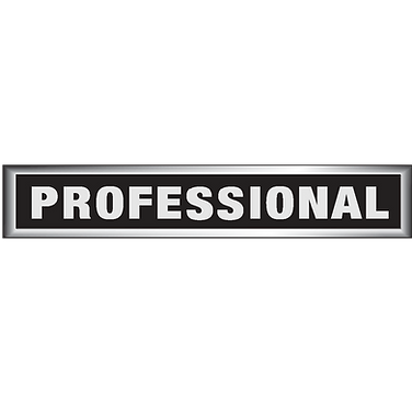 PROFESSIONAL-LOGO.png