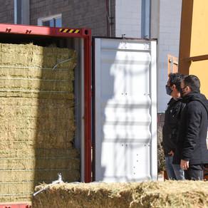 Este viernes parte el segundo cargamento de alfalfa del año