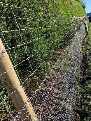 Running Paws Maghull Secure dog field fencing