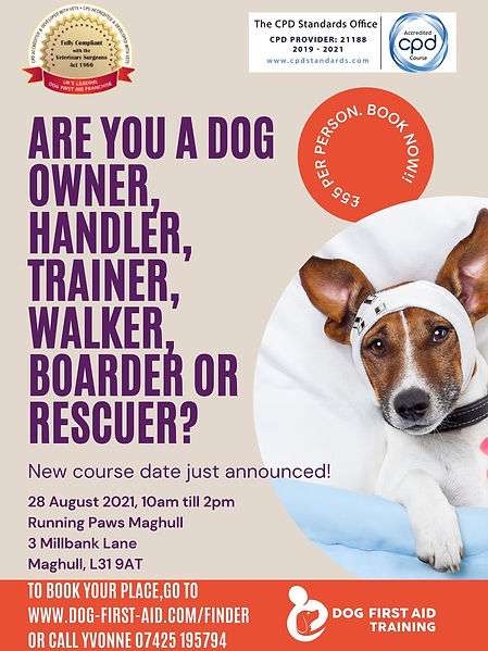 Running Paws Maghulls dog first aid couse hosted by Dog First aid Training