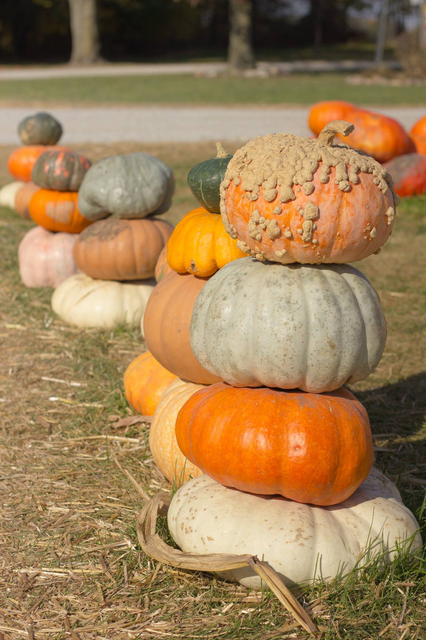 Stackable Pumpkins