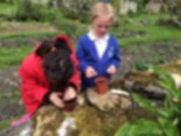 Stokehill farm school visits