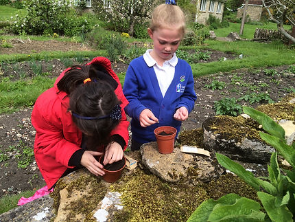 Stokehill farm school visits