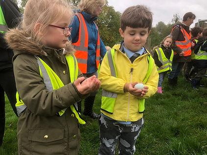 Exploring eggs at Stokehill