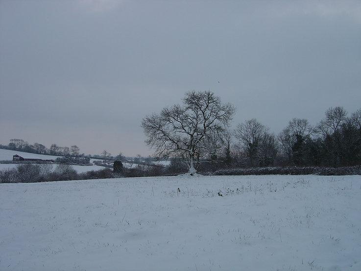 Stokehill in winter