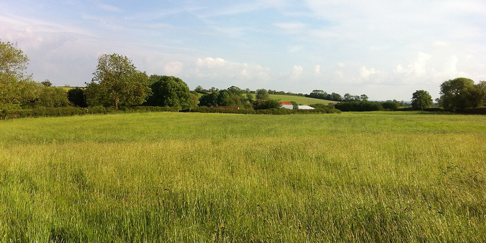 Green Space at Stokehill