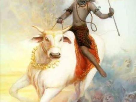 Friday 12th March - appreciating Maha Siva-ratri