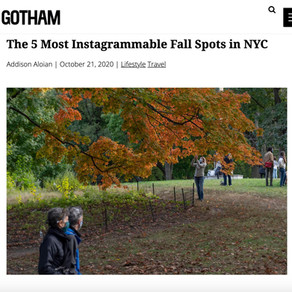 The 5 Most Instagrammable Fall Spots in NYC
