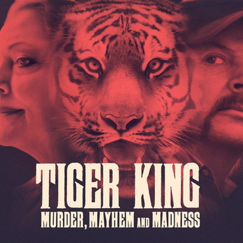 Tiger King Review: WTF Was That??