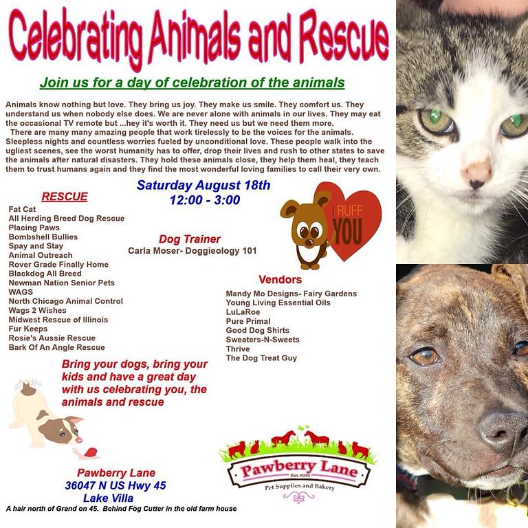 Celebrate the Animals and Rescue