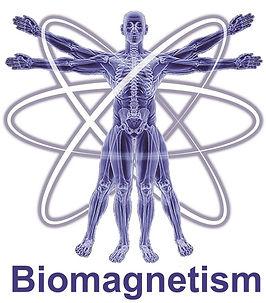 Grays Chiropractic & Wellness Biomagnetism Ooralea Mackay