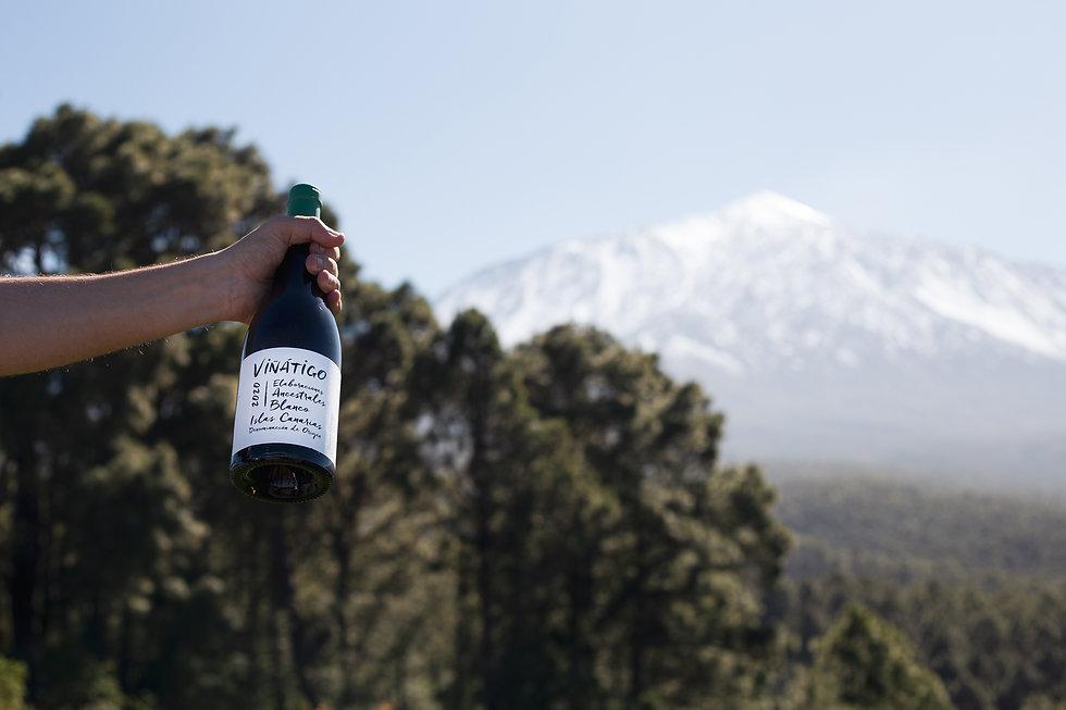 Viñátigo Hompage - Teide Volcano and Elaboraciones Ancestrales Bkanco