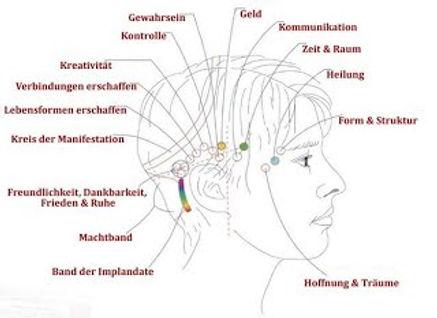 Headchart-Deutsch 1 Seite.jpg