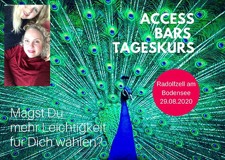 Access Bars Kurs.jpg
