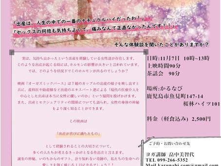 11月7日(水) 映画上映会