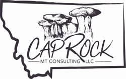 Cap Rock Consulting Logo