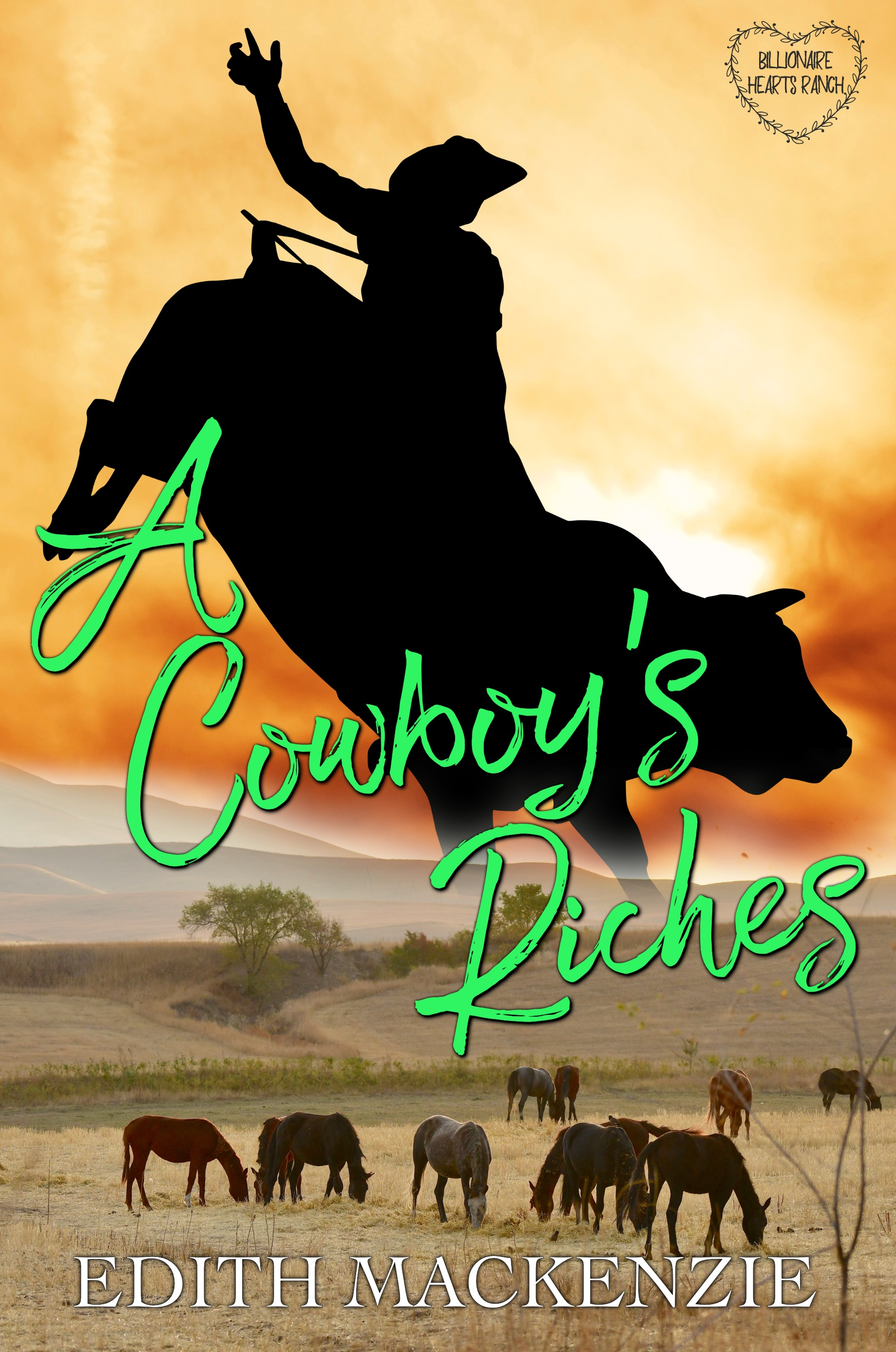 A Cowboy's Riches_ebook
