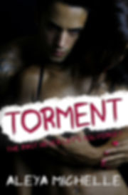 Torment ebook by Aleya Michelle