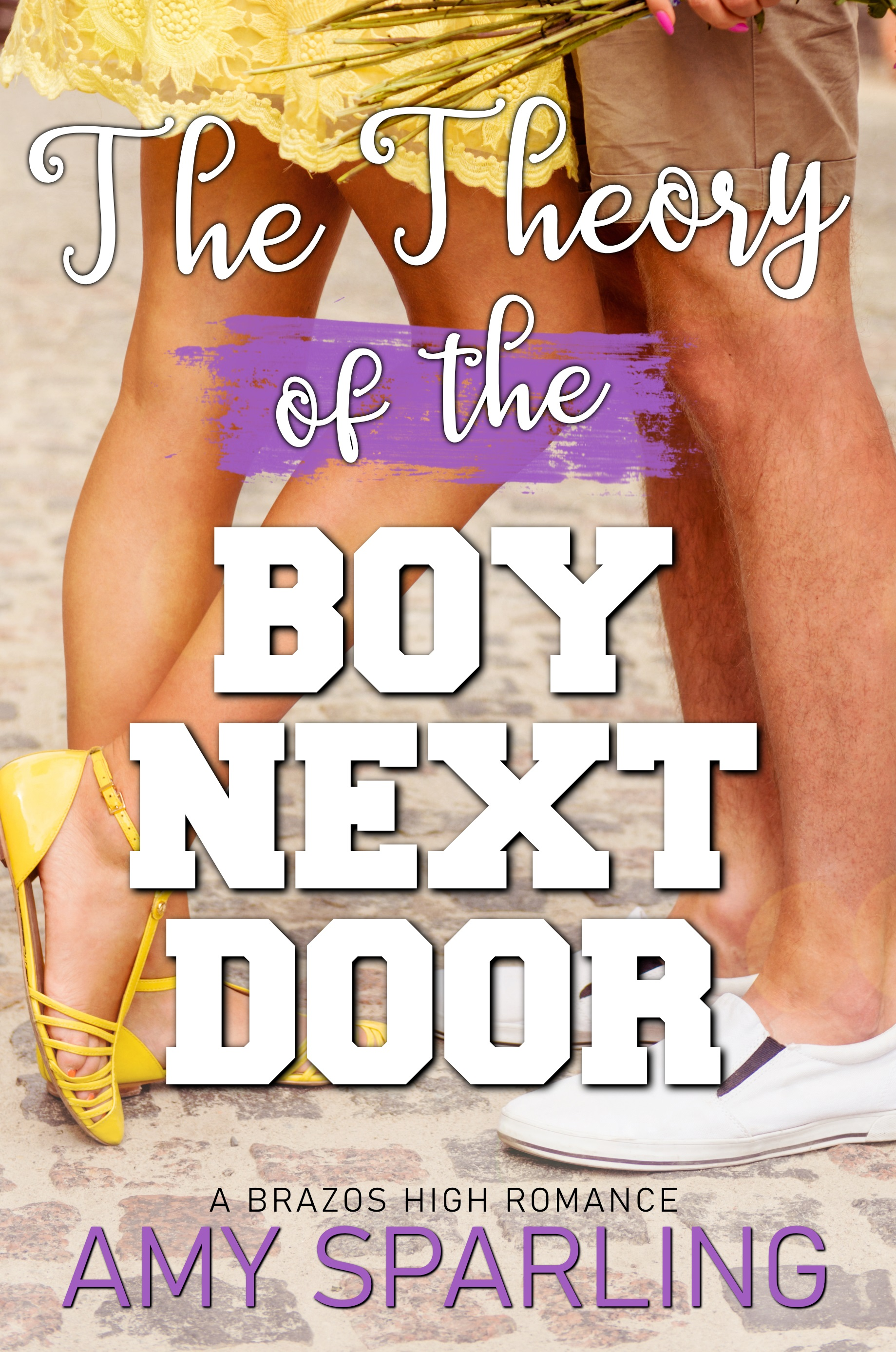 The Theory of the Boy Next Door_ebook