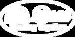 BMSDC white logo.png