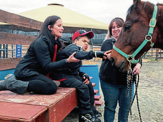 Cook Township center's new enclosure allows year-round equine therapy