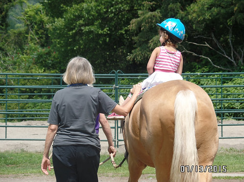 Therapeutic Riding / Adaptive Riding Lessons