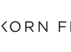 Cooperation with Korn Ferry in career counselling