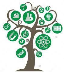 A importância da união substancial para o estabelecimento da árvore do saber cartesiana